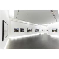 """""""Les fleurs, le chien et les pêcheurs"""" Florence Chevallier - Centre d'Art Contemporain de la Matmut"""